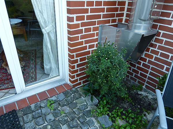 fugen2014-weisserstreifen_1484