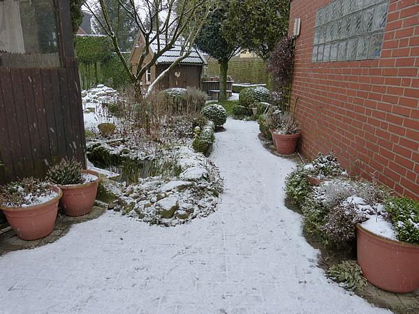 0.Es-schneit-20Jan2016_4935
