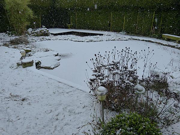 0.Es-schneit-20Jan2016_4942