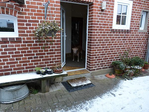 0.Es-schneit-20Jan2016_4946