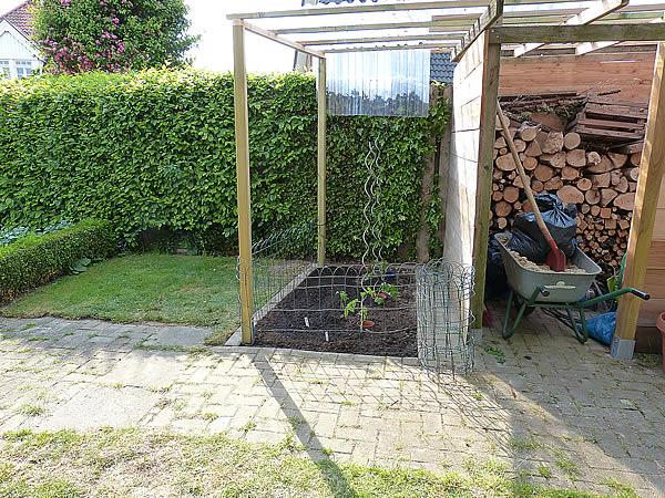 dach f r tomaten dach f r tomaten bauen tomatenhaus oder dach worauf kommt es eigentlich an. Black Bedroom Furniture Sets. Home Design Ideas